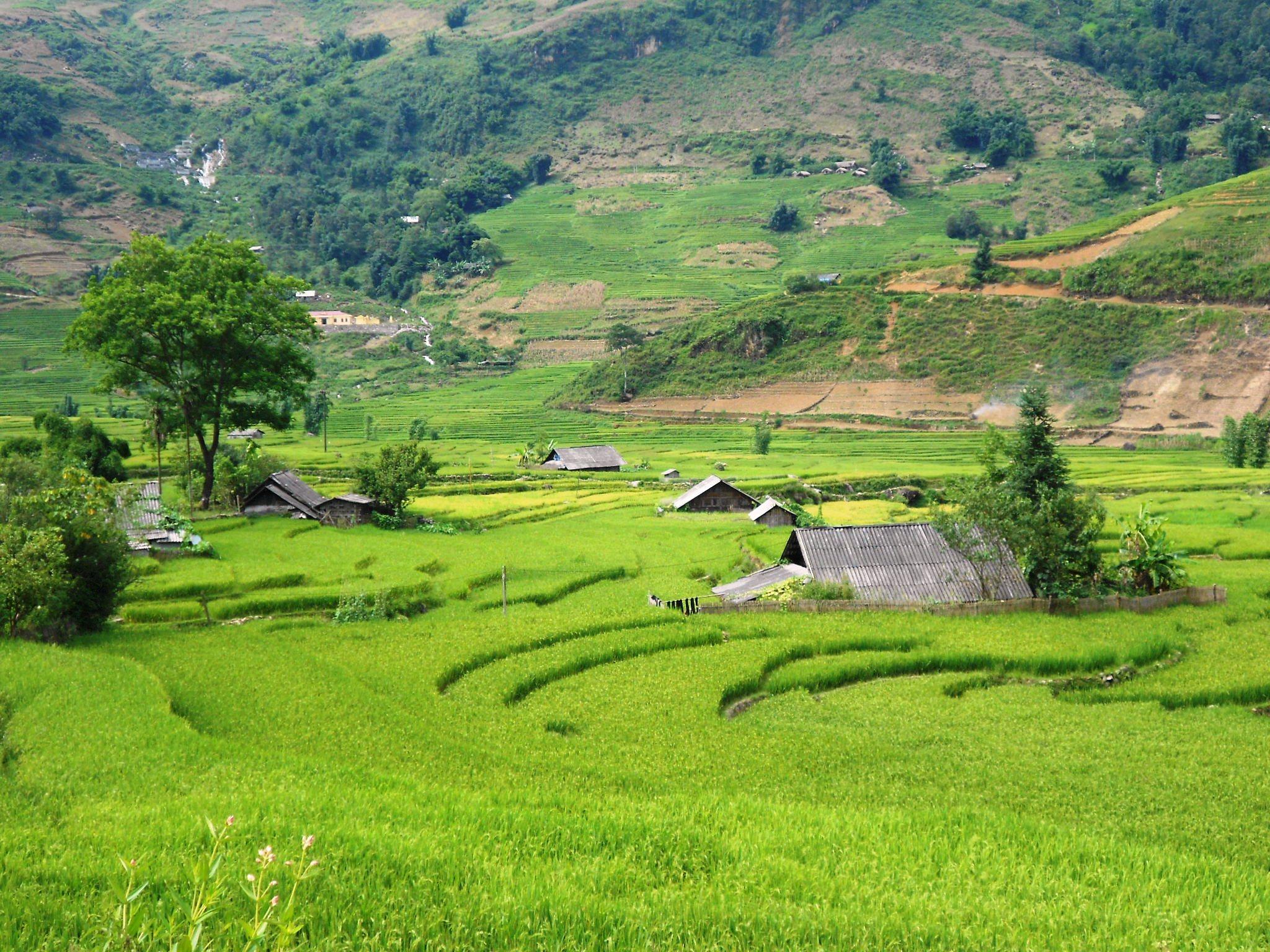 viviendas en la región montañosa de Sapa