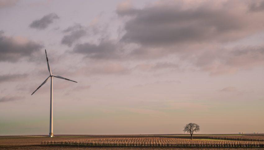 Segunda vida para las palas de los aerogenadores de energía eólica